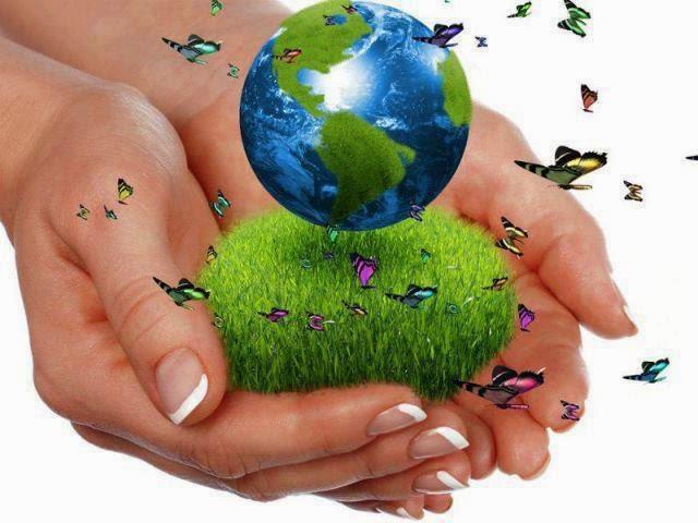 Taxa pentru poluarea mediului